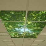 Навесной потолок армстронг